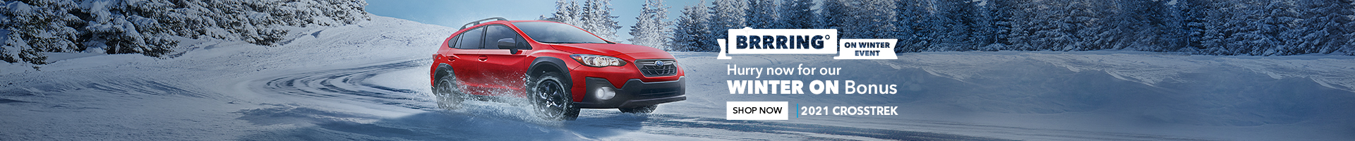 Brrring On Winter Event on now at Peterborough Subaru